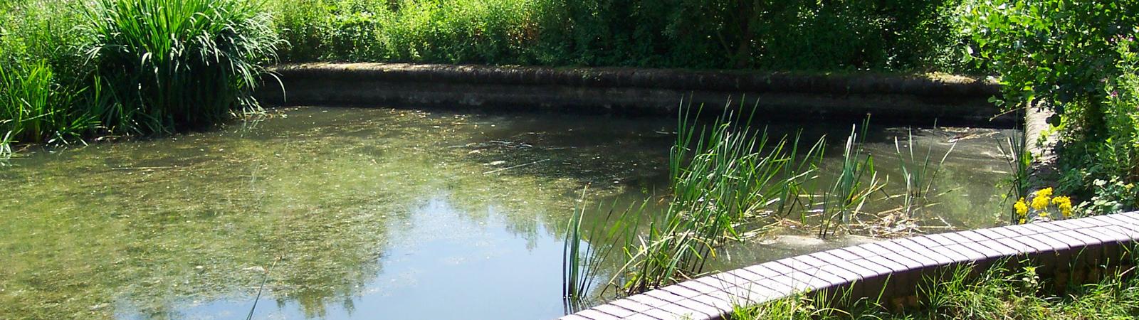 Canal Basin Donnington